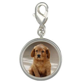 Cute Puppy Photo Charms