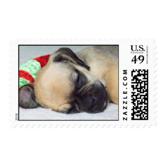 Cute Puppy Postage Stamps