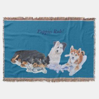 cute puppy sheba inu rotty collie and teddies throw