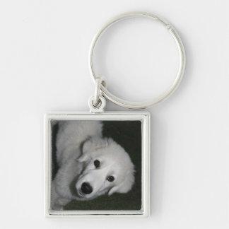 Cute Puppy Silver-Colored Square Keychain