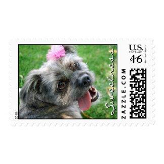 Cute Puppy Stamp