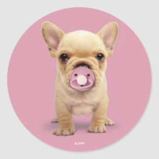 Cute Puppy with Pacifier Classic Round Sticker