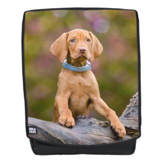 Cute puppyeyed Hungarian Vizsla Dog Puppy Photo /. Backpack