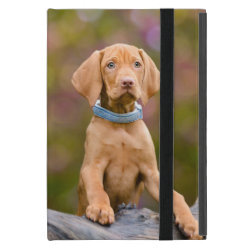 Powis iCase iPad Mini Case with Kickstand with Vizsla Phone Cases design