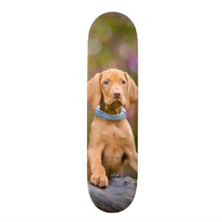 Cute puppyeyed Hungarian Vizsla Dog Puppy Photo -_ Skateboard Deck