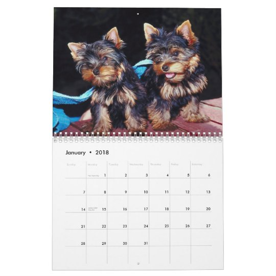 Cute Pups 2012 Calendar