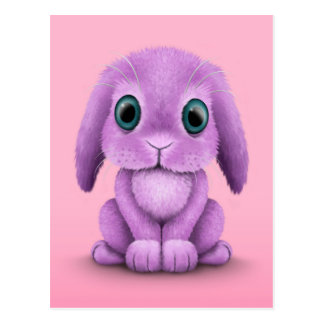 Cute Purple Baby Bunny on Pink Post Card