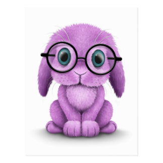 Cute Purple Baby Bunny Wearing Glasses on White Postcards