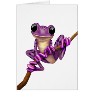 Cute Purple Tree Frog on a Branch on White Card