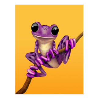 Cute Purple Tree Frog on a Branch on Yellow Postcard