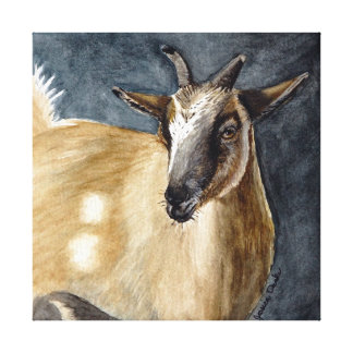Cute Pygmy Goat Watercolor Artwork Canvas Print