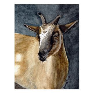 Cute Pygmy Goat Watercolor Artwork Postcard