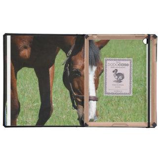 Cute Quarter Horse Covers For iPad