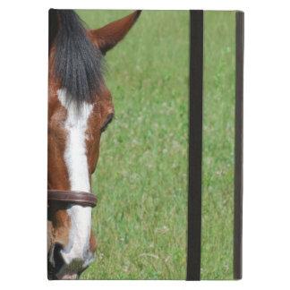 Cute Quarter Horse Case For iPad Air