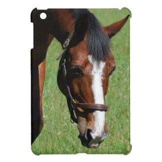 Cute Quarter Horse iPad Mini Cases