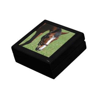 Cute Quarter Horse Keepsake Boxes