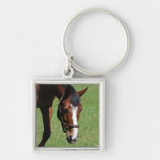 Cute Quarter Horse Key Chains