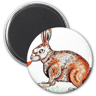 Cute Rabbit Drawing Magnet