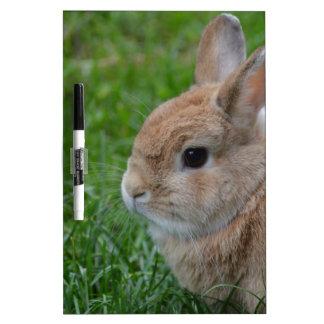 Cute Rabbit Dry-Erase Whiteboard