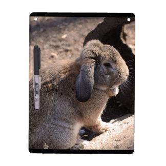 Cute Rabbit Dry-Erase Whiteboards
