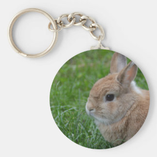 Cute Rabbit Key Chain