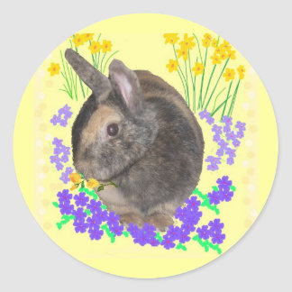 Cute Rabbit Photo and flowers Round Sticker