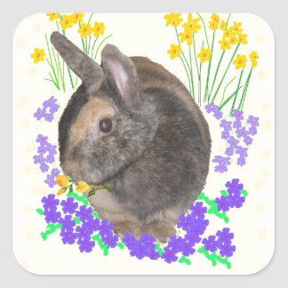 Cute Rabbit Photo and flowers Square Sticker