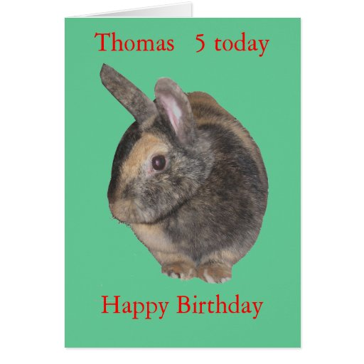 Cute Rabbit Photo childs card