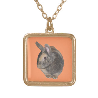 Cute Rabbit Photo Necklace. Gold Plated Necklace