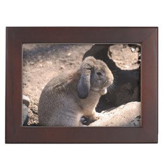 Cute Rabbit Memory Box