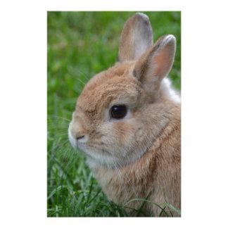 Cute Rabbit Custom Stationery