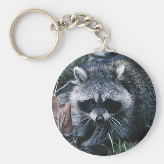 Cute Raccoon Basic Round Button Keychain