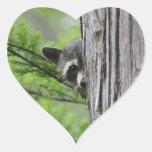 Cute Raccoon Heart Stickers
