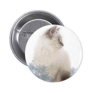 cute ragdoll button
