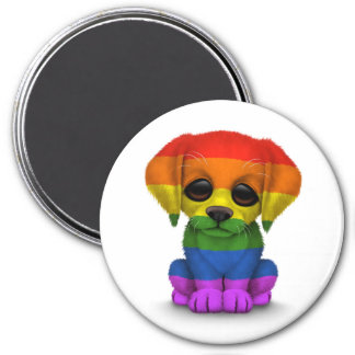 Cute Rainbow Gay Pride Puppy Dog, White Fridge Magnets