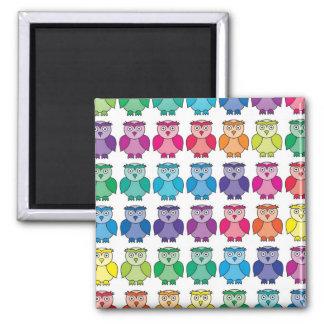 Cute Rainbow Owl Pattern Magnet