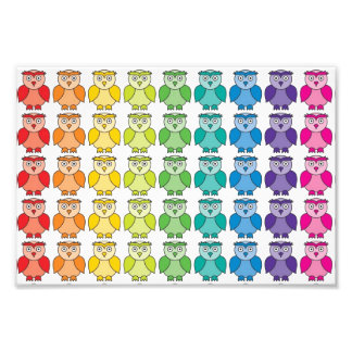 Cute Rainbow Owl Pattern. Photo Print
