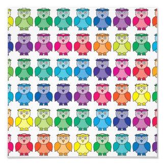 Cute Rainbow Owl Pattern Photographic Print
