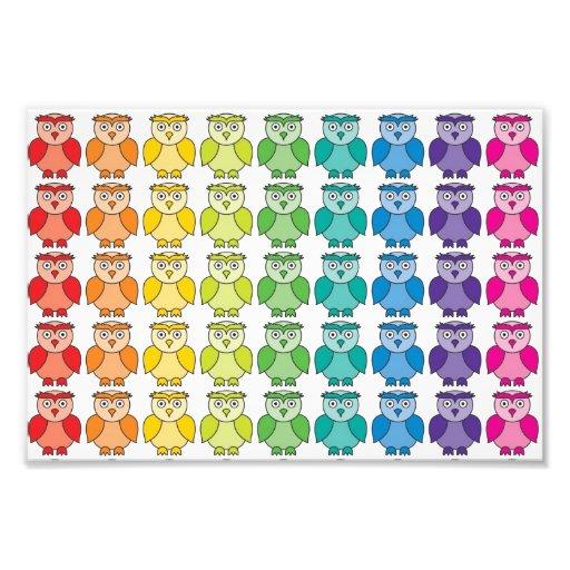 Cute Rainbow Owl Pattern. Photographic Print