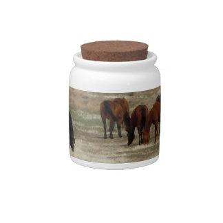 Cute Ranch Horse Herd Western Spare Change Bank Candy Jars