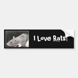 Cute Rat Bumper Sticker Car Bumper Sticker