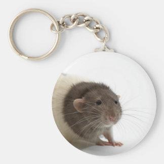 Cute Rat Close-Up Basic Round Button Keychain