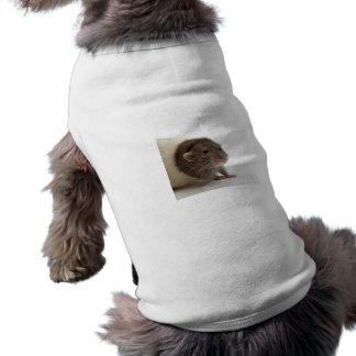 Cute Rat Close-Up Pet Clothes