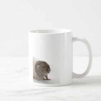 Cute Rat Close-Up Coffee Mugs