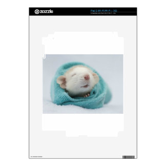 Cute Rat Decals For iPad 2