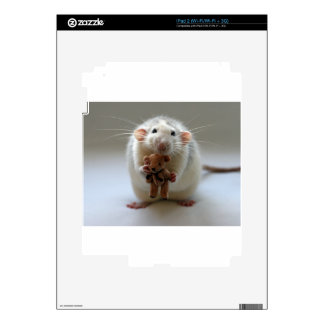 Cute Rat Holding teddy Skins For The iPad 2