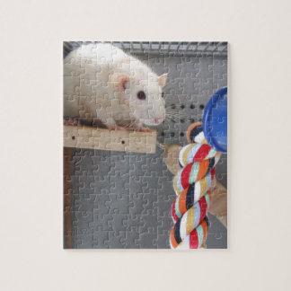 Cute rat in cage puzzles