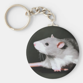 Cute Rat painting Basic Round Button Keychain