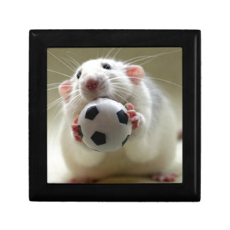 Cute rat playing soccer keepsake box