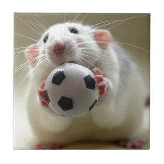 Cute rat playing soccer tile